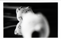 {Lucky Cats}